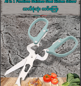 All functions in 1 stainless steel kitchen scissor